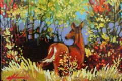 Whitetail Deer 8 X 10
