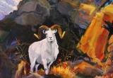 Dall Sheep 16 X 20